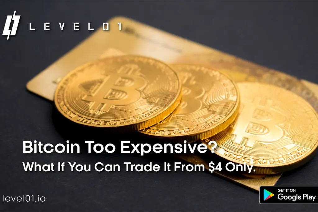 level01 bitcoin too expensive